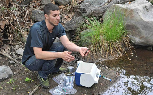 Postdoctoral researcher Garry Bucciarelli studies amphibian toxins in California streams.